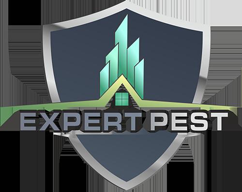 Expert Pest - Deratizare Oradea